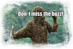 dont miss the buzz
