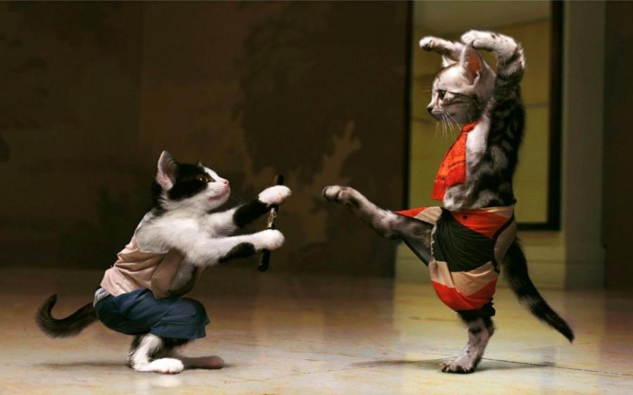 fighting-is-fun2